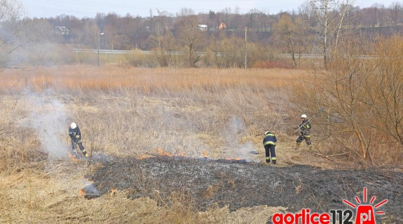 Pożar traw na bieckim załawiu.