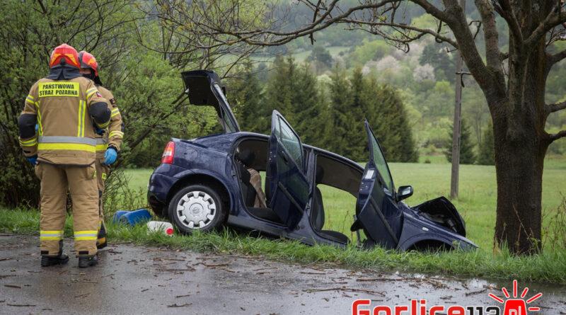Hańczowa: opel uderzył w drzewo. Uwięzione dwie osoby! (TV)